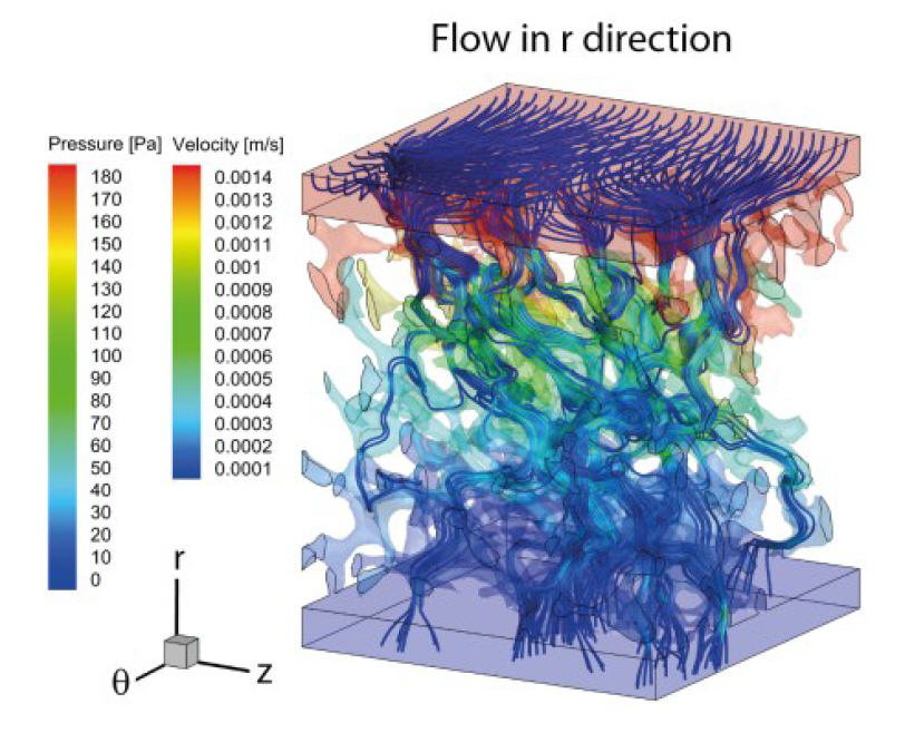 Simulation results in r-direction: preferential flow path