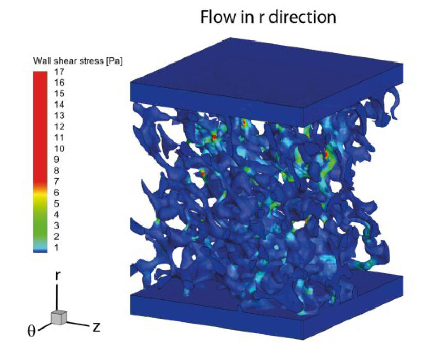 Simulation results in r-direction: wall shear stress