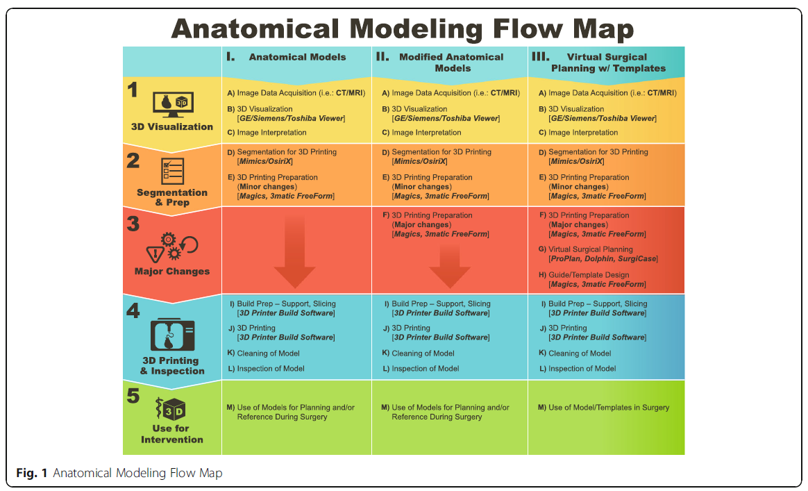 Anatomical Modeling Flow Map