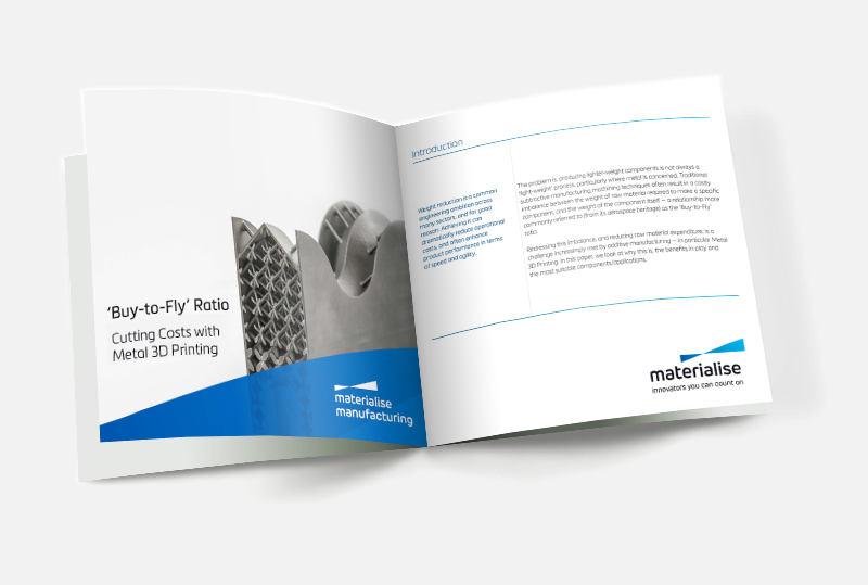 Whitepaper: Buy-to-Fly ratio