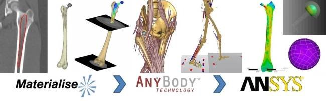 Data on the move: Advancing FEA design through patient-based motion analysis