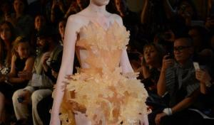3D printed dress by Iris Van Herpen